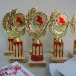 «Сан-Сан» – наградной партнер фестивалей в станице Егорлыкской