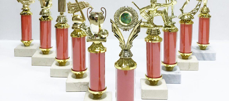 Прозрачный стем-трубка – образцовый компонент современной награды с любой символикой