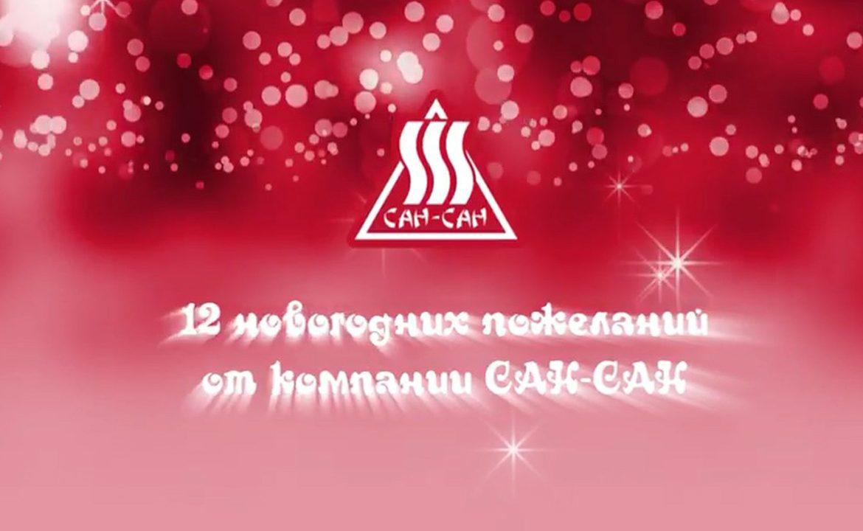 12 новогодних пожеланий от компании «Сан-Сан»